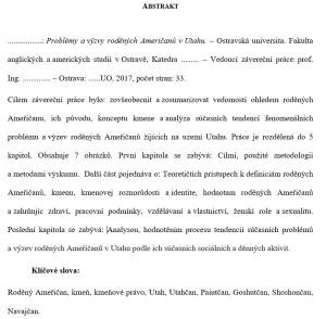 Diplomová práce – Abstrakt vzor2